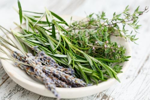 herbs-2523119_1280
